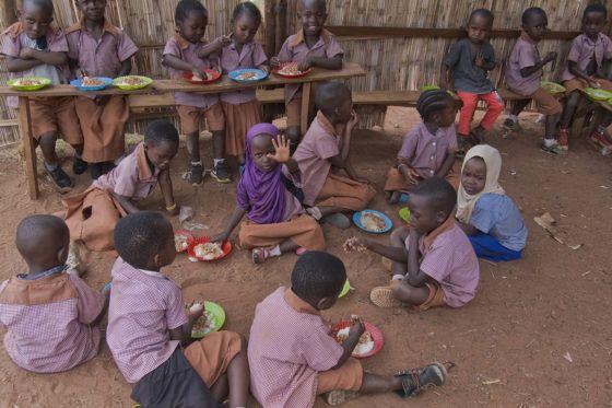 Food Security – Kigoma project